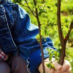 6 maneras de enseñarle a tus hijos a cuidar el medio ambiente